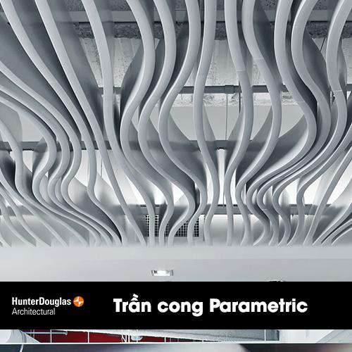 tran cong parametric