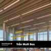 tran multi box