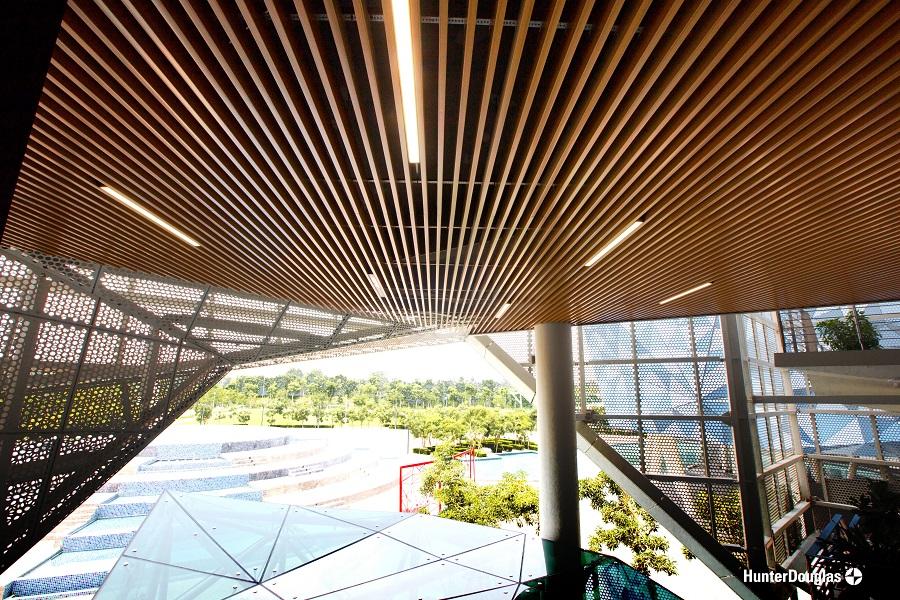 Trường đại học BUV dự án tấm ốp và trần 8